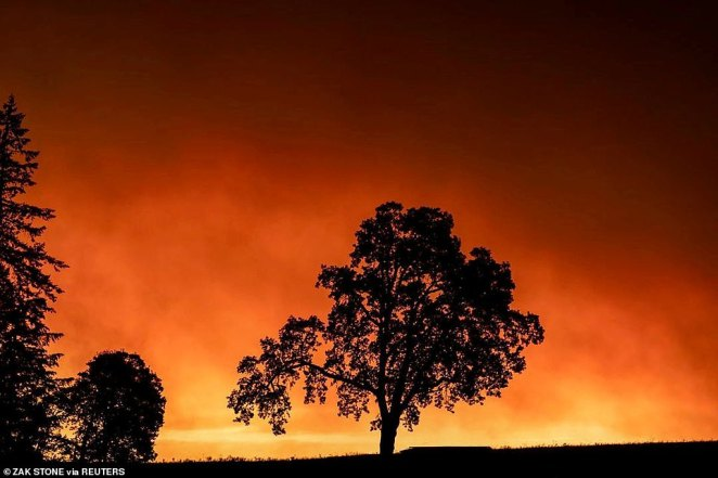 Red sky and thick smoke are seen in Salem City, Oregon in a picture that was taken earlier this week