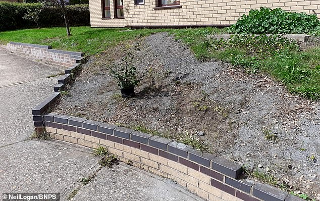 The area pictured after the rockery was removed. The council feared tenants could trip over some of the loose rocks and slabs that formed part of the display built into the grassy bank