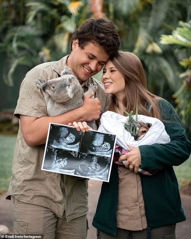 'Baby Wildlife Warrior is now about the size of a bird!'  22-year-old Bindi Irwin and 23-year-old Chandler Powell shared the first sonogram of their baby on Instagram on Sunday.