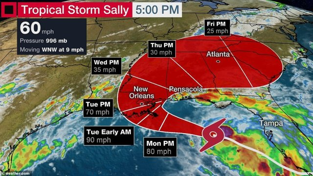 At 11am EDT, its sustained winds had increased to 60 mph, the National Hurricane Center said on Sunday