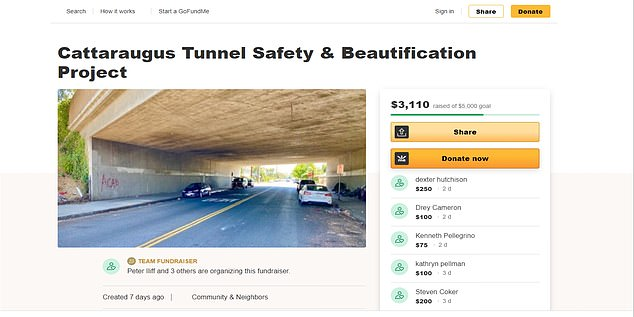Iliff recently set up a GoFundMe crowdfunding effort titled 'Cattaraugus Tunnel Safety & Beautification Project.'The campaign raised $3,650 before it was taken down. It set a goal of $5,000