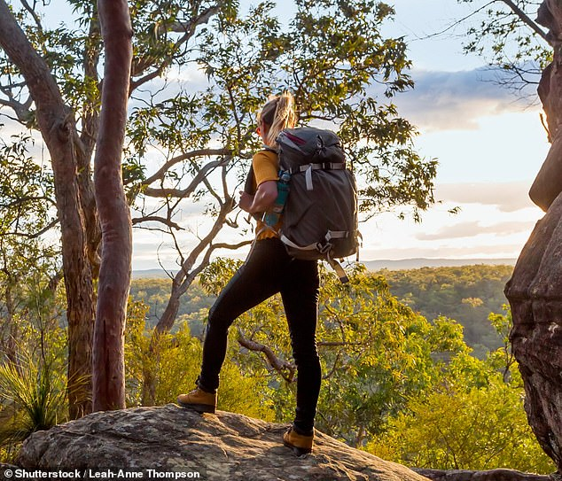 Female backpackers are speaking out about the alleged sexual harassment and exploitation they suffered when they worked on Australian farms to extend their Working Holiday Visas (stock image)