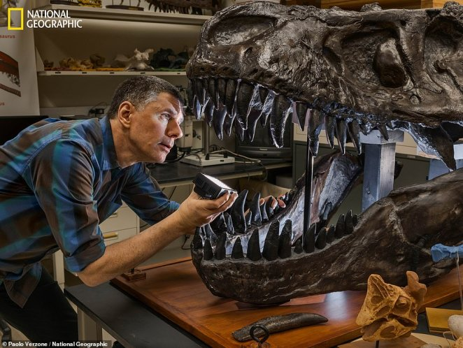 Ohio University paleontologist Lawrence Witmer used CT scans to determineof dinosaurs released heat from their bodies. Using CT Scanners, he found the tyrannosaurus rex used its large nose sinuses to let out excess heat