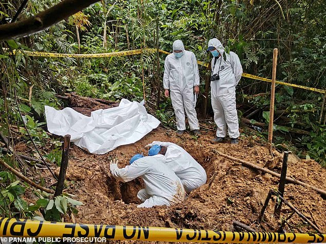 Authorities in Panama have discovered a new mass grave in a remote area in Panama, pictured above and below