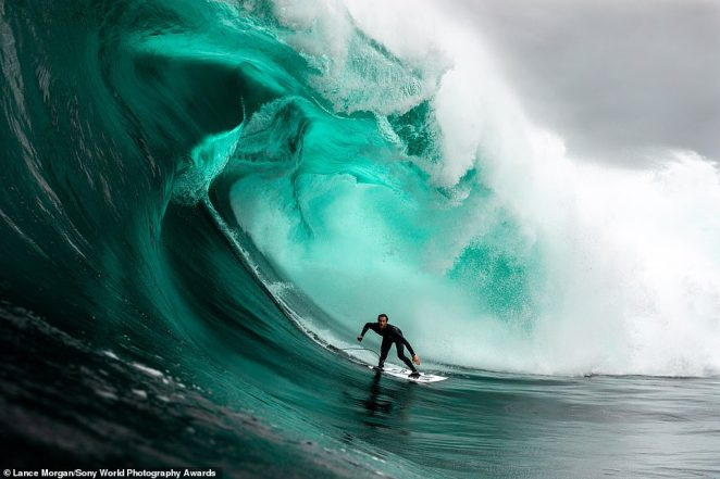 Australian photographer Lance Morgan entered this jaw-dropping image into the lifestyle category. It shows surfer Mikey Brennan riding a wave off Ship Stern Bluff in Tasmania. Photographer Lance says that storms with intense force brew in the Southern Ocean, whipping up gigantic swells in the area