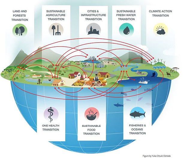 Transitions in eight aspects of human activity, could still allow the planet's biodiversity to be saved. Pictured, the eight listed 'transformative changes' and how they are linked