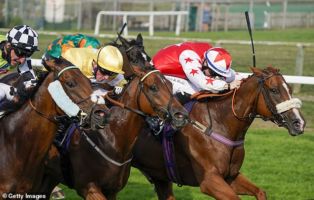 Sportsmail's racing expert Robin Goodfellow dishes out his tips on Friday's meetings