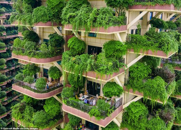 The project in the southwestern city was built in 2018, with each private balcony designed to provide space for plants to grow.