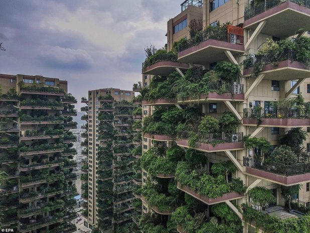 According to the project's estate agent, by April this year all 826 apartments had been sold, but instead of modern eco-paradise, the towers look like a desolate, post-apocalyptic film set