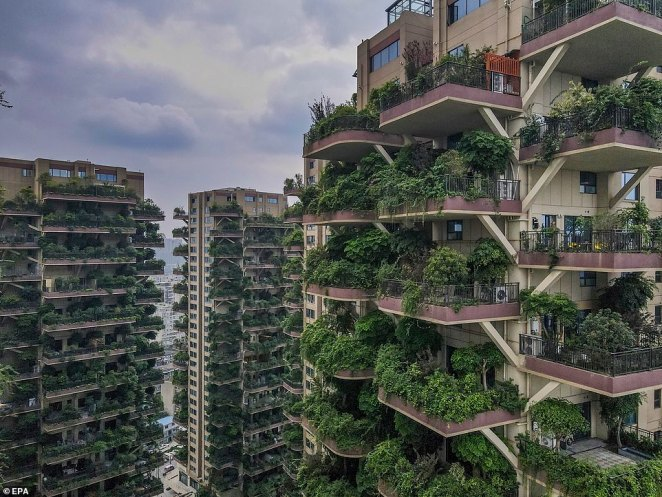 All 826 apartments were sold out by April this year, according to the project's estate agent, but instead of a modern eco-paradise, the towers look like the set of a desolate, post-apocalyptic film
