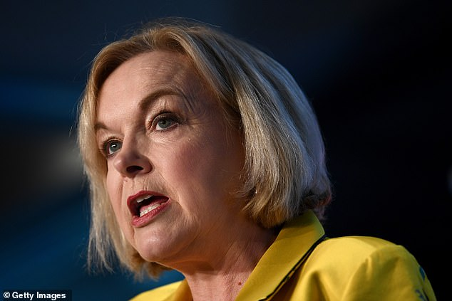 Opposition leader Judith Collins (pictured)slammed the Government's handling of the pandemic, saying National would 'not let COVID-19 into New Zealand'