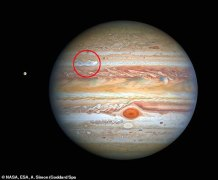 Hubble Photo of Jupiter Reveals a Giant Storm is Brewing in the North Which Could One Day Rival the Legendary 'Great Red Spot'