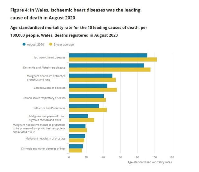 Covid-19 was also missing from the top ten most common causes of death in August in Wales (pictured)