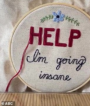 Help: Mindy Kaling added, 'When I get nervous, I do embroidery,' before revealing the piece she was working on, which reads, 'HELP I'm going insane'