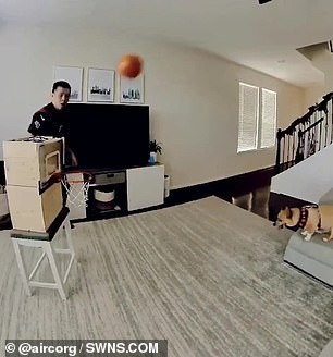 Denny Ku, 29, from Houston, Texas began training her to shoot with a basketball