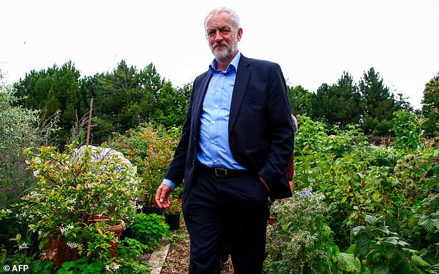They were among 19 Labour MPs to break ranks with the party and vote against the bill alongside Mr Corbyn (pictured), who had criticised it