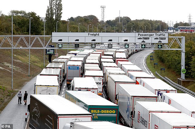 Queues of lorries were pictured on the M20 nearby as they waited to enter the Eurotunnel to Coquelles, France in Folkstone