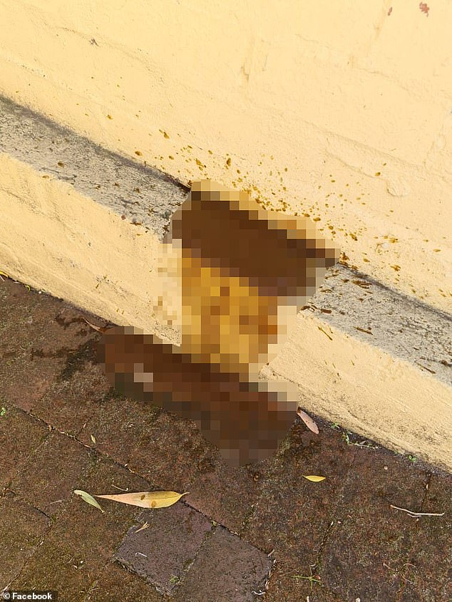 A female poo jogger left a vile 'urgent poo' (pictured above) in the driveway of a family home on a busy street in Leederville, north Perth, at about 8am on Friday morning