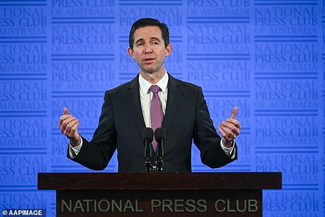 Tourism Minister Simon Birmingham said the plan to restart travel between New Zealand and Australia could go ahead with strict airport controls separating flyers from the two countries with other travellers