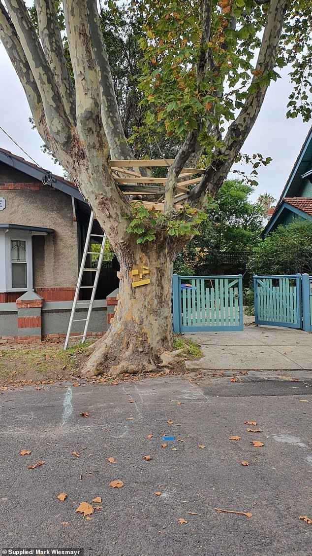 Port Phillip Council chief executive Peter Smith said the treehouse and ladder were deemed unsafe by council officers