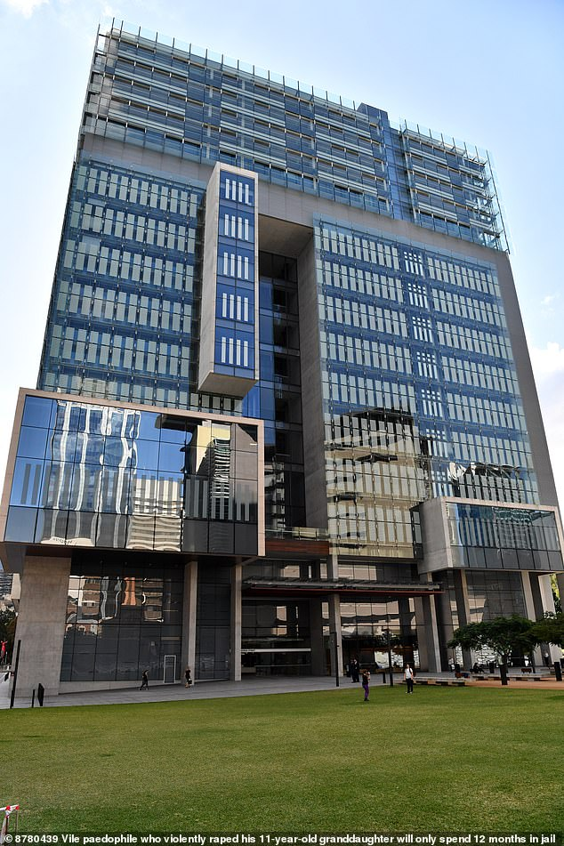 Brisbane District Court (pictured) heard the Redland Bay man was drunk when he molested the 11-year-old girl last year
