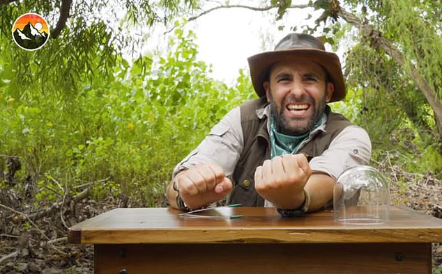 Coyote Peterson, 39, getsstung and bitten by the world's most terrifying creatures is what the man in the leather Crocodile Dundee hat does for a living