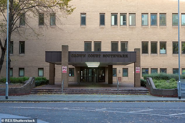 Holmes, joined in the dock by his assistance dog, black Labrador, Nancy, denied one charge of sexual assault at London's Southwark Crown Court (file image pictured)
