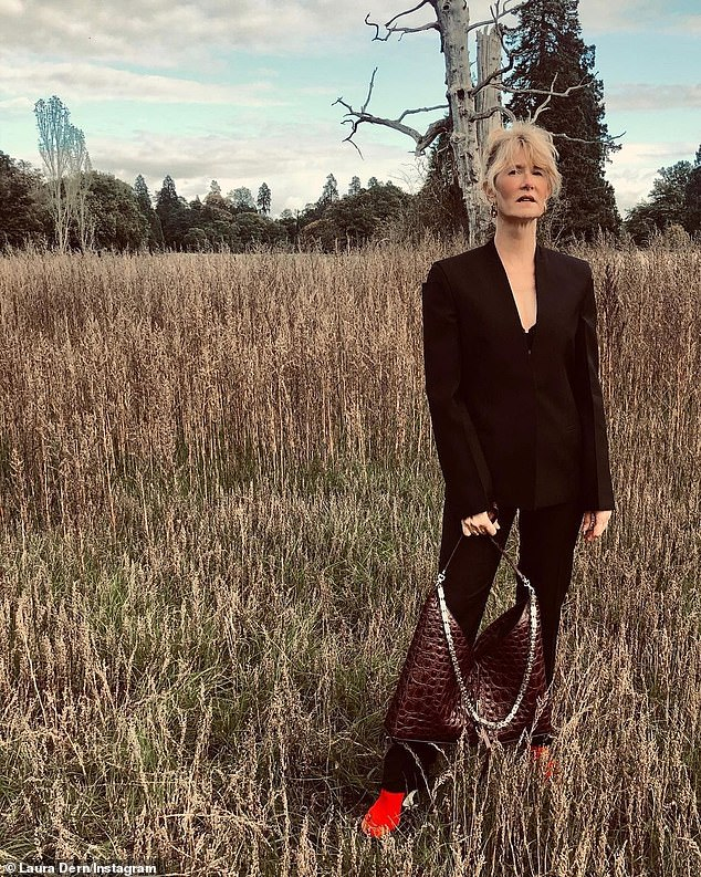 The great outdoors: Laura Dern went for sophisticated chic in her shoot, posing outdoors while donning a sharply tailored suit and clutching onto the same sort of croc-skin bag featured in her peers' photos