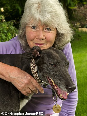 Still fabulously dashing at 83, Jilly Cooper continues to write bestsellers