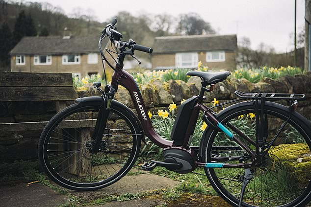 Electric bikes can be recharged from the mains using a conventional three-prong plug.  Charging takes a few hours, depending on the size of the battery