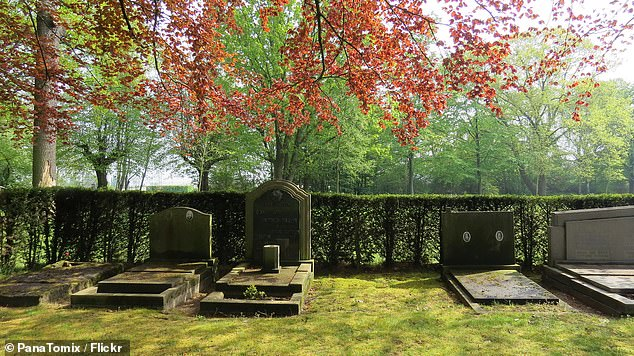 Schoonselhof Cemetery is home to the graves of celebrated Belgian writers, artists, Olympians and more than 1,500 British commonwealth soldiers who died in World War II