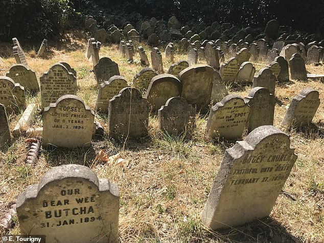 Britain¿s oldest pet cemetery at Hyde Park, establishedin 1881 when the owner of a recently deceased dog asked the gatekeeper of Hyde Park if the pooch could be buried there