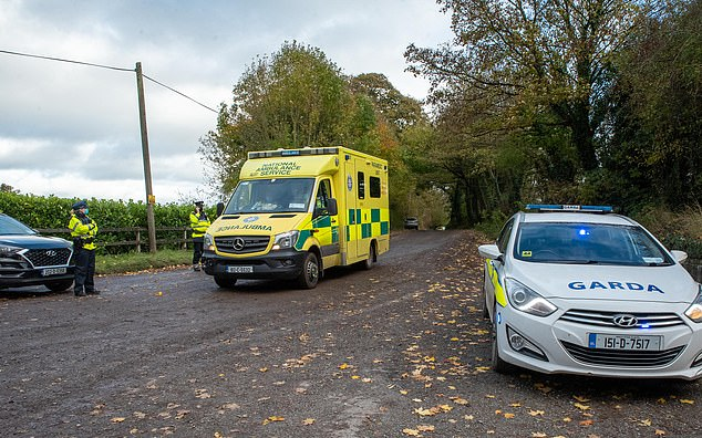 A full investigation has been launched, and the state pathologist and the Garda Technical Bureau are to visit both scenes