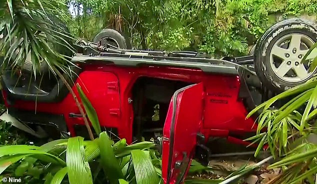 The four-wheel-drive (pictured) landed upside down on its roof after plunging off a cliff