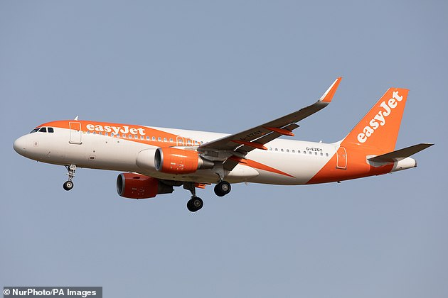 EasyJet is offering flight changes with no fee for the next 14 days. Pictured: File image of an easyJet plane