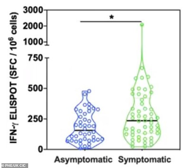A T cell response was detected in all patients, with people who expressed symptoms creating around 50 per cent more T cells than in asymptomatic patients. Pictured, a graph showing the heightened immune response in symptomatic patients