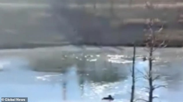 The teenagers were walking on the stormwater pond in Calgary on Friday morning when they fell into the freezing water