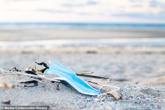 Koordinatorja e Madhe Britanike e Pastrimit të Plazhit Lizzie Prior tha: 'Sasia e PPE-ve që vullnetarët tanë gjetën në plazhe dhe në brendësi këtë vit është sigurisht shqetësuese'
