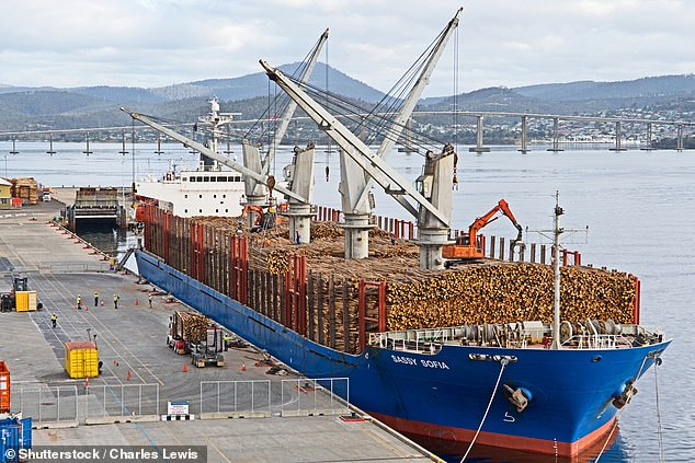 From today, Australian copper ore and concentrate, as well as sugar will also be banned from entering China (pictured, a cargo ship in Tasmania is filled with timbre)