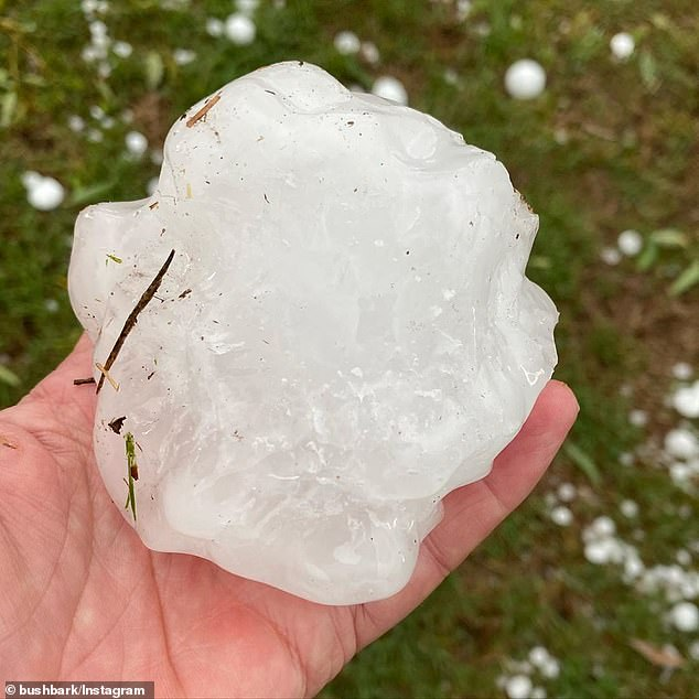 Tennis ball-sized hail lashed south-east Queensland last week