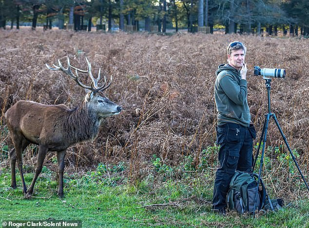 What's the problem? Any wildlife photographer would be delighted to capture this magical moment but this one is clueless as to what is going on right behind him