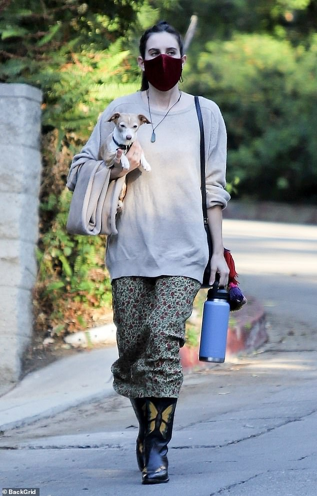 Scout Willis looks stylish in skirt and sweater ensemble during walk with her beloved dog Grandma
