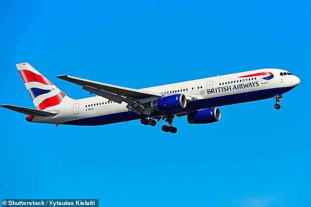 Passengers would take a second, more rapid test when they arrived at the airport. Those who tested negative could travel without quarantine restrictions. Pictured: British Airways Boeing 767
