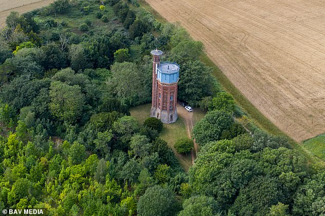 Experts have suggested a variety of bat-friendly plants, including cherry pie, soapwort, evening primrose, night-scented stock, bladder campion and Nottingham catchfly. Pictured,Appleton Water Tower in Sandringham,Norfolk.