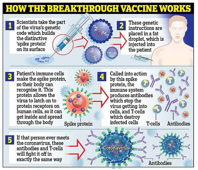 Moderna's vaccine works similarly to that developed by Pfizer and BioNTech, using genetic material called coronavirus RNA to trick the body into making the `` peak '' proteins that the virus uses to attach itself to cells within. inside the body.