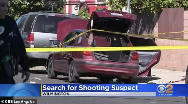 Police in Wilmington, Los Angeles set up a crime scene around the car where Arlene Leonor Rodriguez, 24, was sitting when she was shot by an unknown gunman