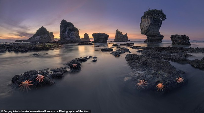 An atmospheric shot ofMotukiekie Beach on the west coast of New Zealand's South Island by Russian photographer Sergey Aleshchenko. It made the judges' top 101 images list