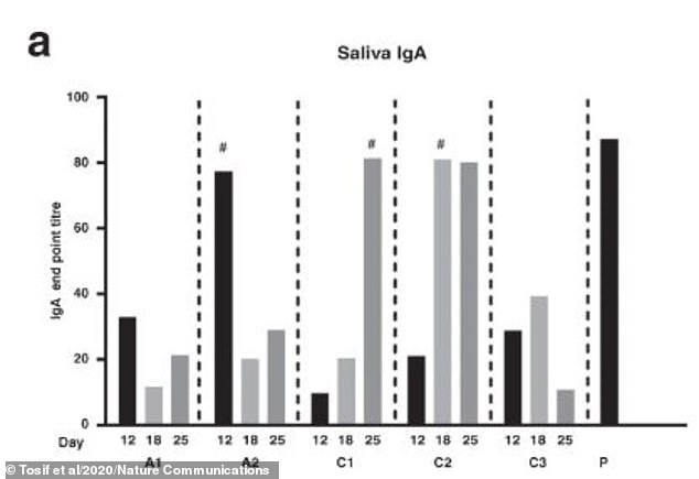 The researchers found SARS-CoV-2 specific IgA antibodies in saliva of all family members (pictured). IgA is a type of antibody which is secreted into the mouth, nose, lungs and gut