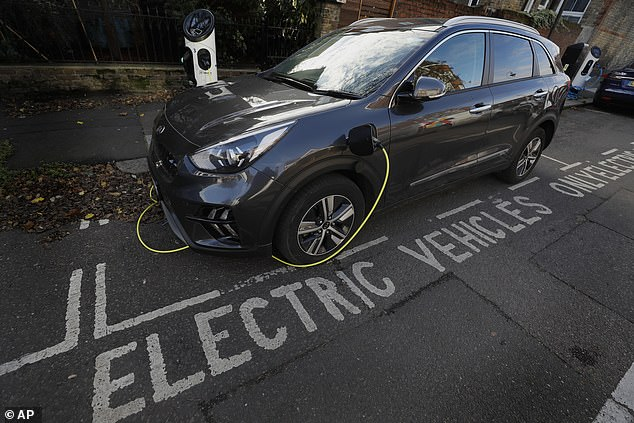 A third of motorists are unable to afford even the cheapest electric car, accordinganalysis by the Centre for Economics and Business Research (CEBR) (file photo)