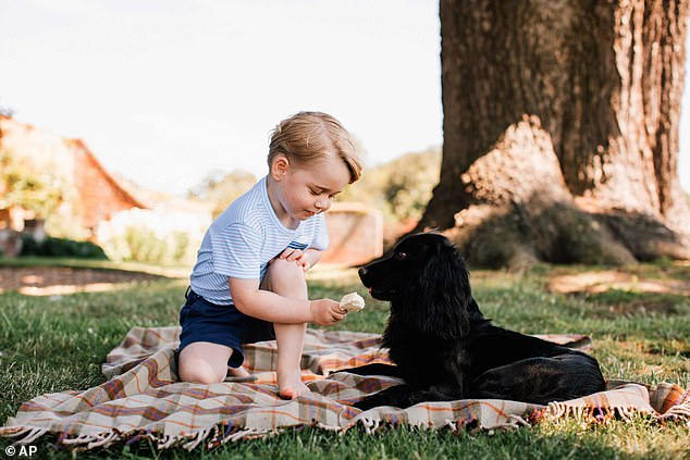 Prince William and Kate Middleton said Lup (pictured with Prince George in 2016) was 'at the heart,' of their family since 2011